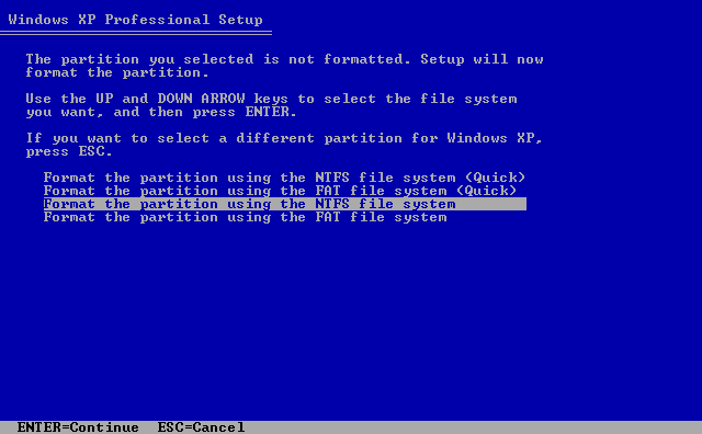 10) Format the partition: (Image 1.10)