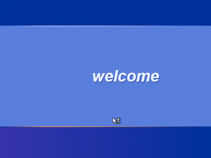 28) The Welcome Screen: (Image 3.4)